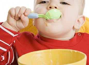 alimentos-indispensables-para-la-dieta-de-un-nino-de-1-a-2-anos_ti4d9