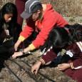 como-ayudar-a-los-ninos-con-su-proyecto-de-ciencia-sin-hacer-el-trabajo-por-ellos_7brl9