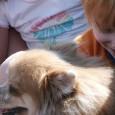 consejos-para-preparar-a-los-ninos-a-tener-mascotas-en-casa_cy5wo