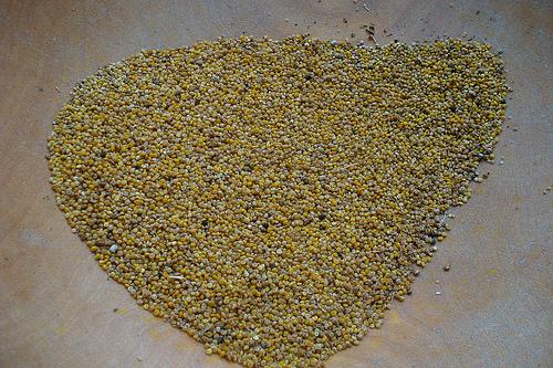 Consumir quinoa. Un perfecto complemento para nuestra salud