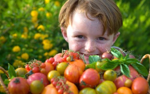 Descubre qué es lo que no debe comer tu hijo