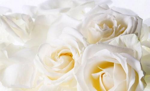 es-aconsejable-llevar-al-nino-a-un-funeral_stv6m