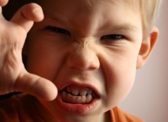 la-agresividad-infantil_x6nwf