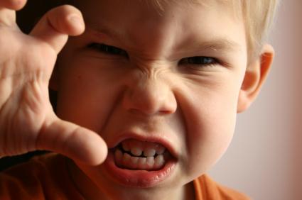 La agresividad infantil