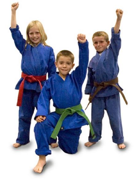 Las artes marciales una actividad también para niños