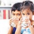 los-tipos-de-leche-y-sus-beneficios_rvzi9